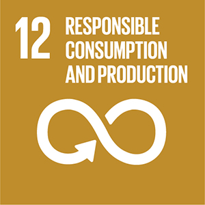 Theme 1: Reducing negative impacts on environment and promoting efficient use of resources Icon