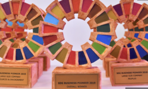 The SDG Business Pioneers Logo